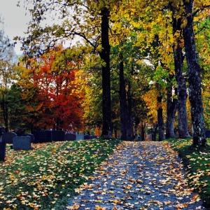 Solum kirkegård